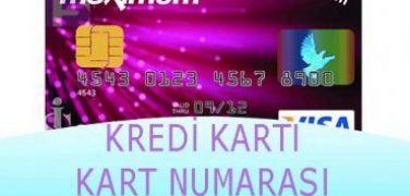 Kredi Kartı Kart Numarası Nerede Yazar?