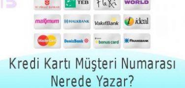 Kredi Kartı Müşteri Numarası Nerede Yazar?